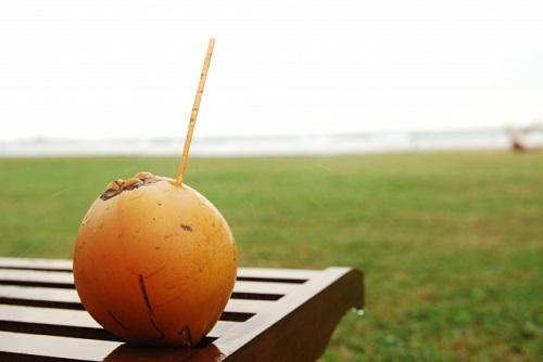 毎日酵素はココナッツ液が主原料