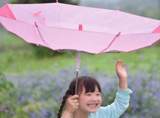 楽しい逆さま傘