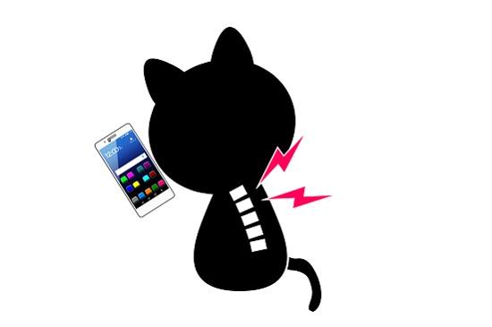 おすすめの猫背矯正インナーは?